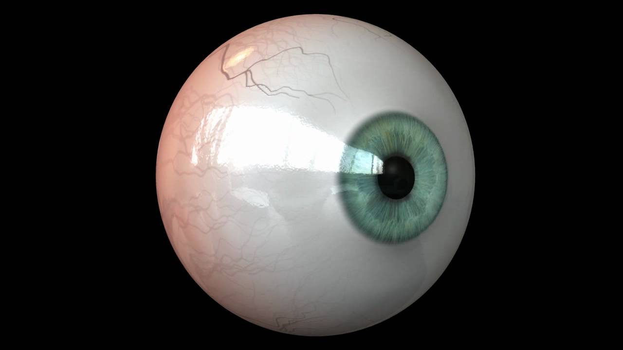 how to make a 3d eye model