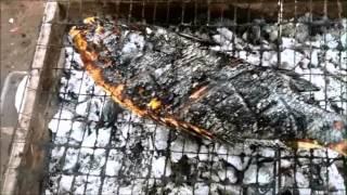 سبيطي إيراني وزن 2800 جرام - مطبخ فلفل كيفان