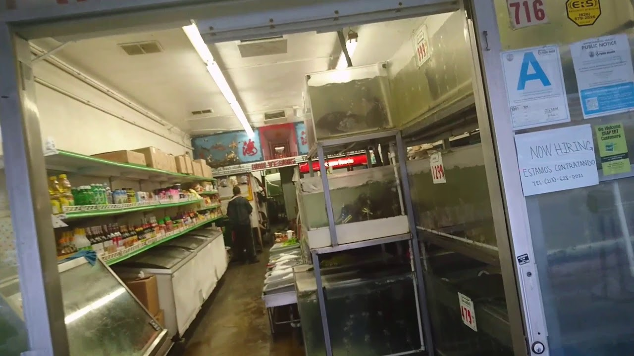 Lobster and live fish market in Chinatown  Los Angeles, California  11-12-2017
