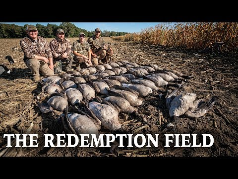 Standing Corn Goose Hunt   Learning From Past Hunts