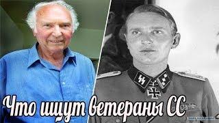 """""""Наглость"""". Что немецкие ветераны ищут в России? Ветераны Вермахта и СС ведут поиски."""