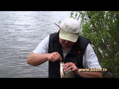 Видео о рыбалке -