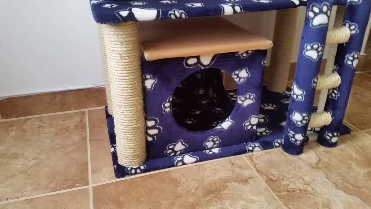 Gimnasio para gatos por s lo medell n antioquia - Como hacer un gimnasio ...
