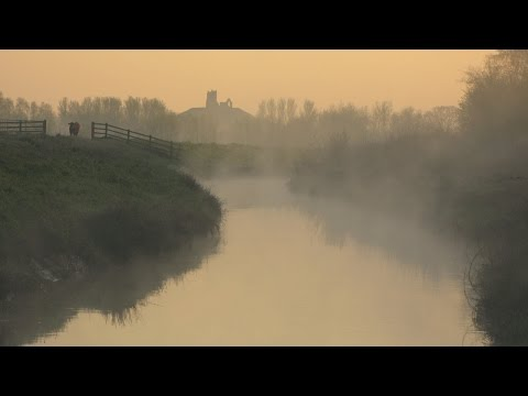 The Somerset Levels & Moors
