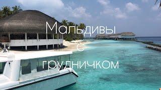 Мальдивы с малышом. Остров Dreamland. Перелёт с грудничком. Отличный остров на Мальдивах. Мале.