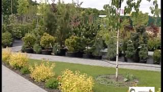 ВІККА-КОРИСНО. АГРО (Садовий центр