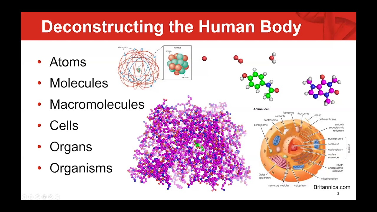 Drug Discovery Today- Dr Stephen Antonysamy