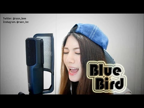 【라온】NARUTO SHIPPUDEN (ナルト疾風伝) - BLUE BIRD (Vocal Cover)