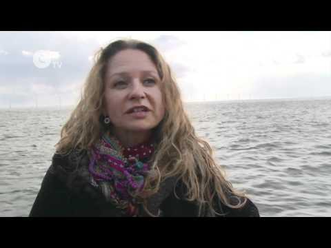 Denmark Pioneers Clean Energy