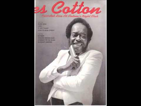 JAMES COTTON - Blow wind - Live at Antone's 1987. mp3