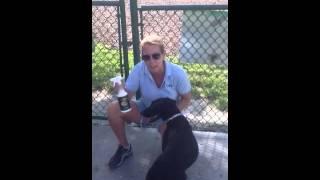 ATLAST! Flea & Tick Spray @ the dog park