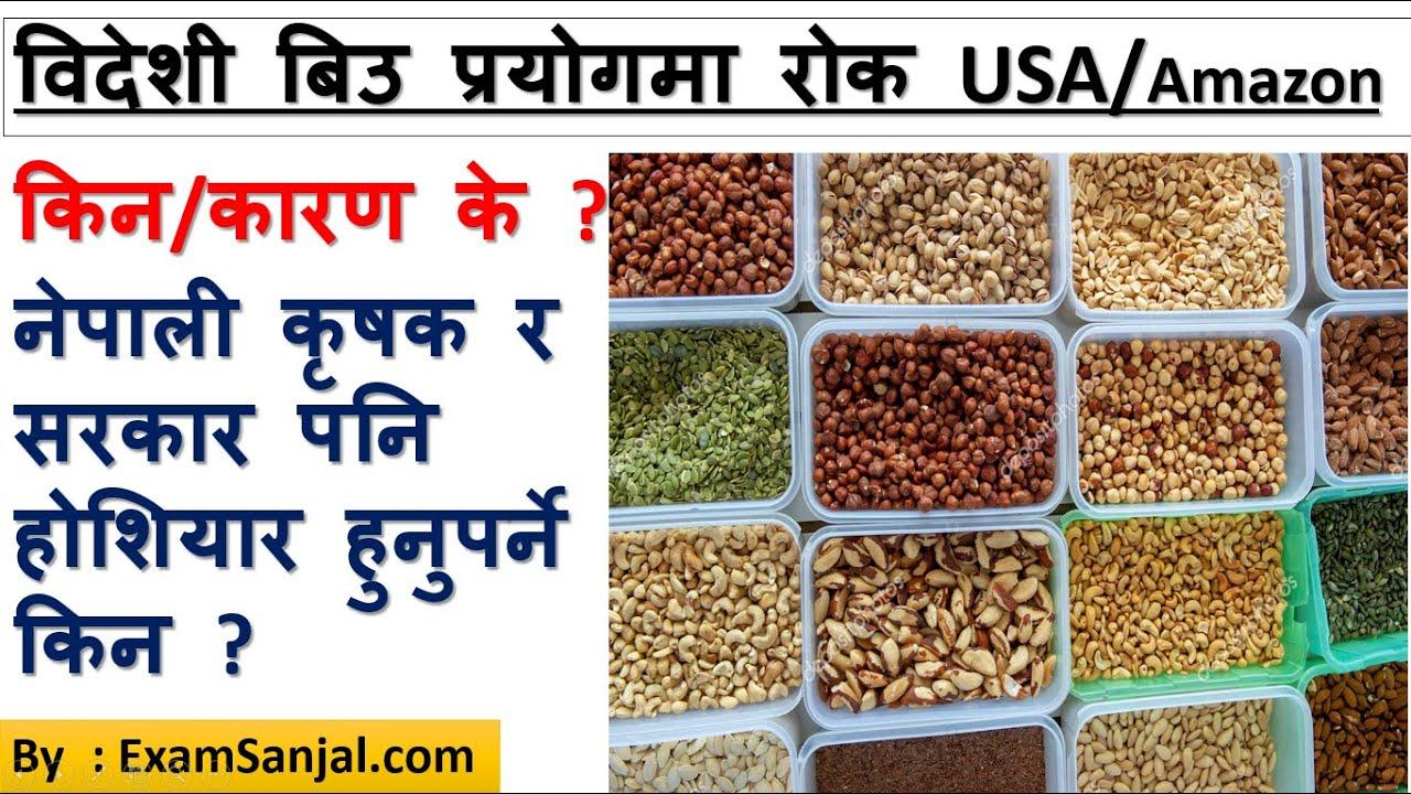 विदेशी बिउको प्रयोगमा रोक किन/कारण USA/Amazon Bans Foreign Seeds नेपाली कृषक/सरकार होशियार हुनुपर्ने