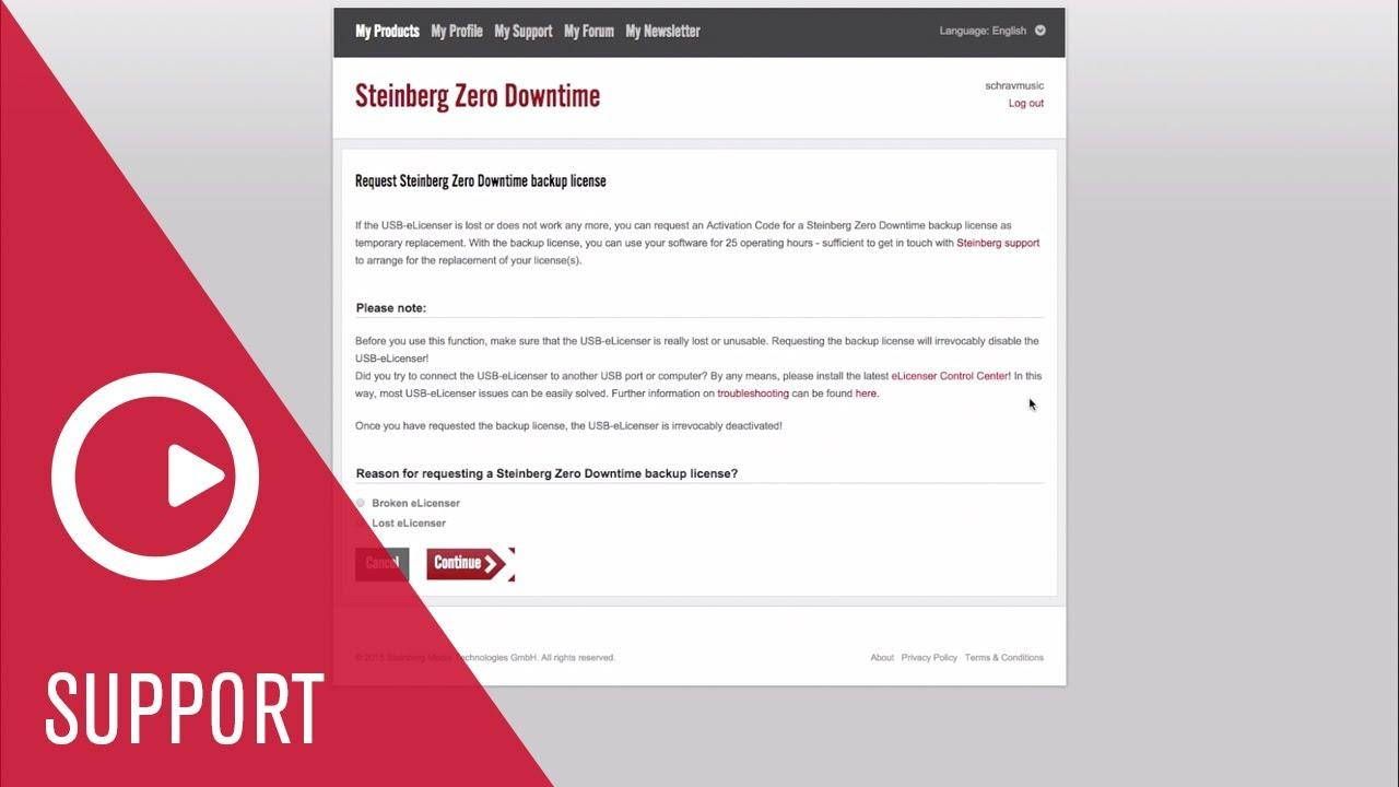 Steinberg Zero Downtime – Steinberg Support