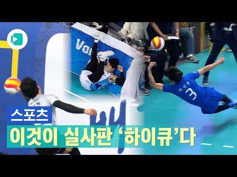 하이큐 뺨치는 남자 프로배구 허슬 플레이 모음 / 비디오머그