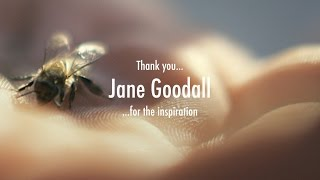 JANE GOODALL  Mother Earth