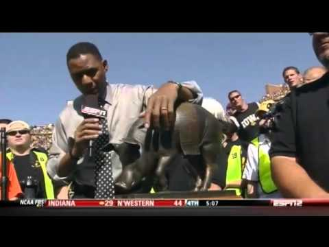 Lewis Johnson interviews a pig statue
