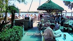Swordfish Grill and Tiki Bar -  Review - Cortez, FL
