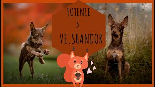 Ve SHANDOR | PeruFamily