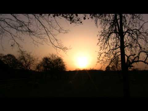 The Wonder of Life - Sunset & Wisdom Quotes with Yoga Music from the album Yoga Sunset Chill Vol. II