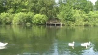 Hiltruper See in Münster