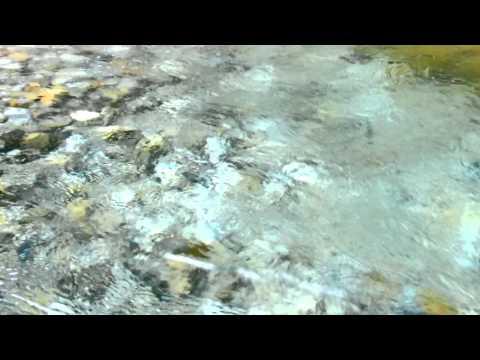 【自然音】せせらぎ-5 / 1 Hour Nature Sounds - Babbling Brook Sounds
