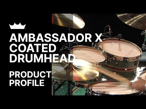 Ambassador X