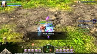 Dragon Nest - Disasembled Rough Artuem and Rough Diamond