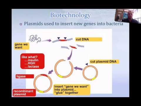 DNA Technology Part 1