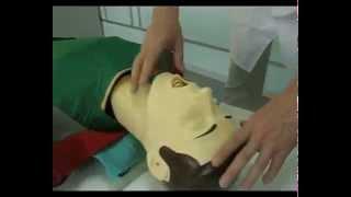 как сделать искусственное дыхание и непрямой массаж сердца