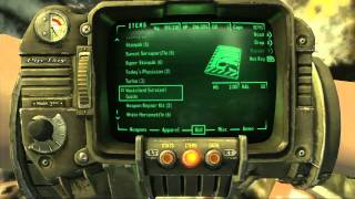 Fallout: New Vegas - Beer, Poker, and Fallout 3 Easter Eggs