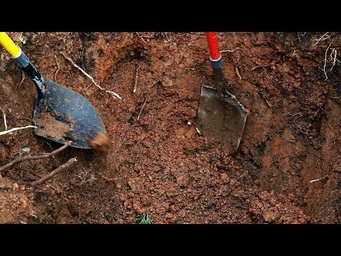 The Dead Unknown Part 2 The Exhumation