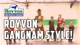 Royvon Dog Trainers In A Funny Gangnam Style Dance