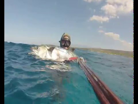 Spearfishing King Mackerel from shore DR