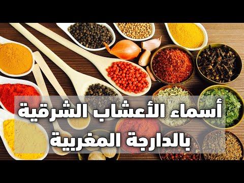 أسماء مجموعة من الأعشاب الشرقية بالدارجة المغربية Youtube