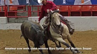 zoetis aqha versatility ranch horse world championship show march 19 2016
