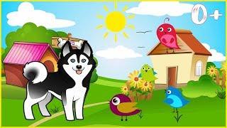 Песенка - Игра 'Барбос и Птички' 🐶 Наш Барбос отличный Пес, 0+ 🐦