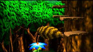 Banjo Kazooie Music: Click Clock Wood Spring Extended