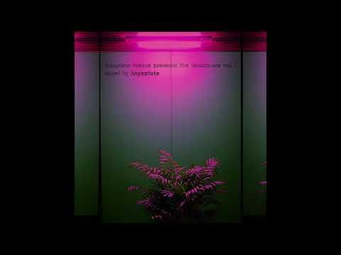 Architectural - Vida Sin Luz [TR001]