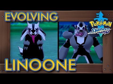 Pokémon Sword & Shield - How to Evolve Linoone into Obstagoon