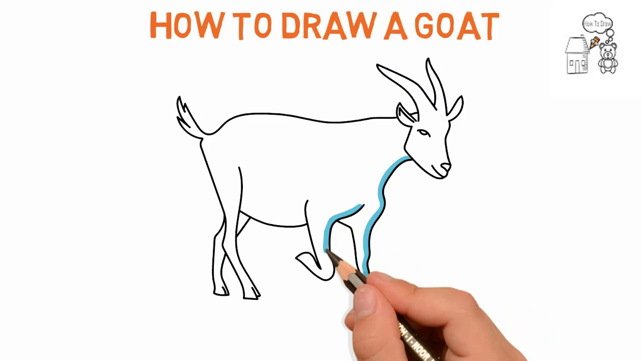 Goat How To Draw A Goat Easy Sketch Drawing Video Demo Latest
