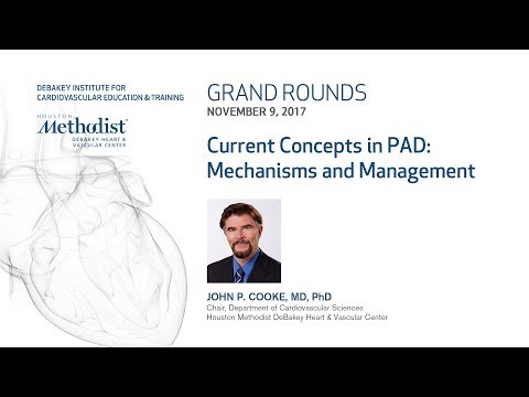 Current Concepts in PAD: Mechanisms and Medical Management (JOHN P. COOKE, MD, PhD) November 9, 2017