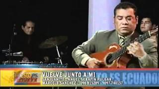 MARCELO SANCHEZ Y SUS GUITARRAS-VUELVE JUNTO A MI.wmv