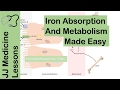 Iron Absorption, Transport, Metabolism and Regulation - Biochemistry Lesson