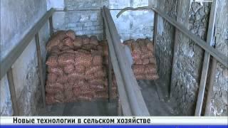 видео Производство и продажа биогумуса