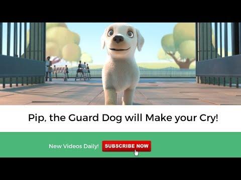 Small Dog having Big Dreams - Pip, a Short Animated Film
