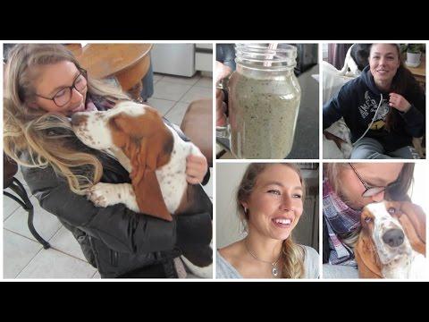 VLOG! // Visiting Puppies & Preparing for LA!