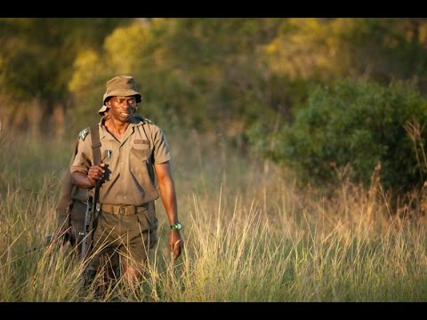 From the Frontline: Saving our Rhino