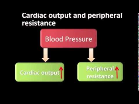 Pathophysiology of Hypertension - YouTube
