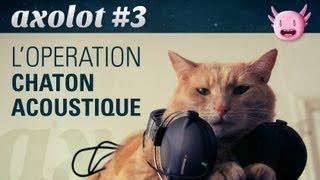 Axolot #3 : L'Opération Chaton Acoustique