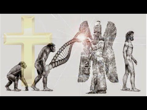 [Hindi] Alien Anunnaki, Theory of Evolution or God, who created humans ?――  ACA Rapture Group
